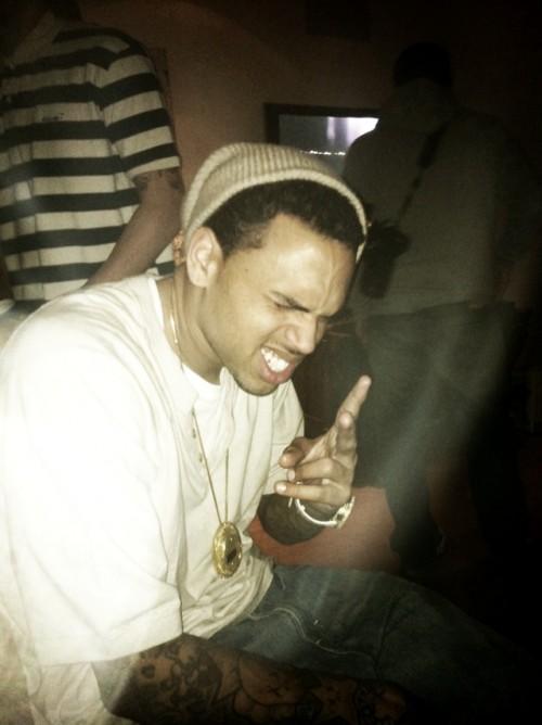 chris brown brown e1301239334843 Hot Shot: Chris Brown Ditches Blonde Do