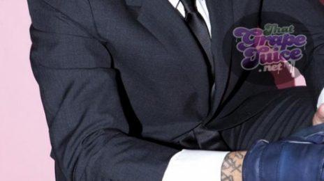 Video: Chris Brown Gives Fan A Lap Dance
