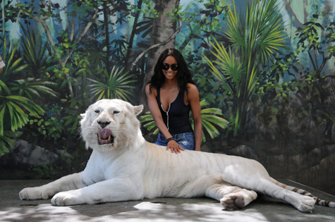 ciaratiger Hot Shot: Ciara Gets Wild In Australia