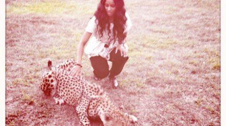 Hot Shots: Ciara's Safari Adventure In South Africa
