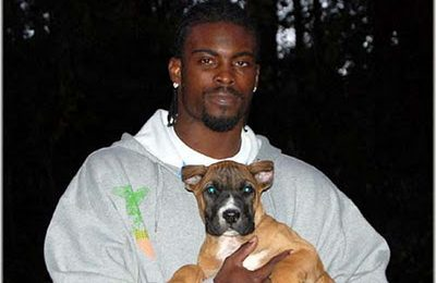 Michael Vick To Plead Guilty