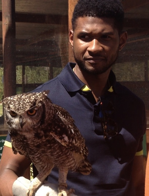 Usher owl 2 Hot Shots: Ushers Wild Life Adventure In South Africa