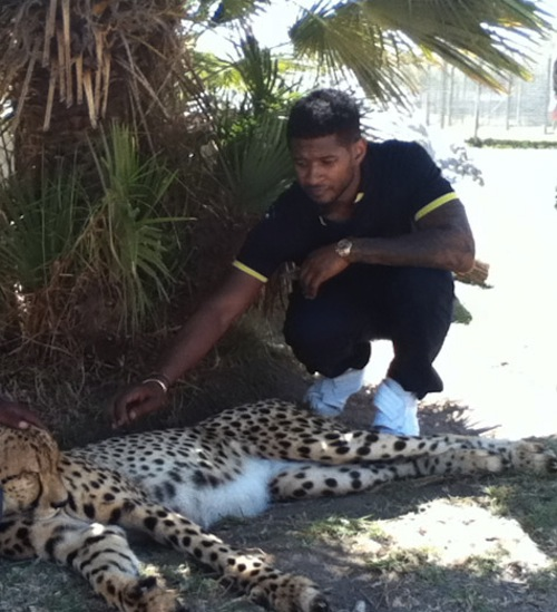 usher cheetah  Hot Shots: Ushers Wild Life Adventure In South Africa