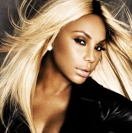 tamar braxton sleigh ride download