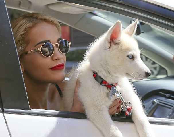 rita ora and dog that grape juice Guess Who?!