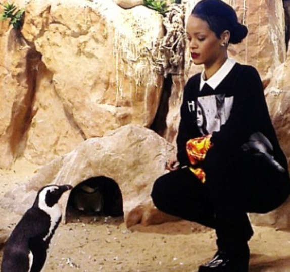 rihanna penguin tgj that grape juice Watch: Rita Ora & Calvin Harris Dine At Hakkasan