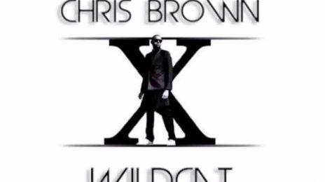 New Song: Chris Brown - 'Wildcat'
