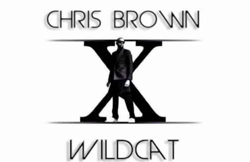 chris brown wildcat thatgrapejuice New Song: Chris Brown   Wildcat