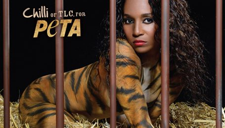 Watch:  TLC's Chilli Shows 'PETA' Some TLC