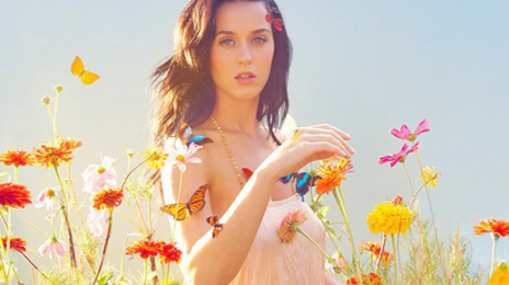 Katy Perry Launches 'Make Roar Happen' Initiative