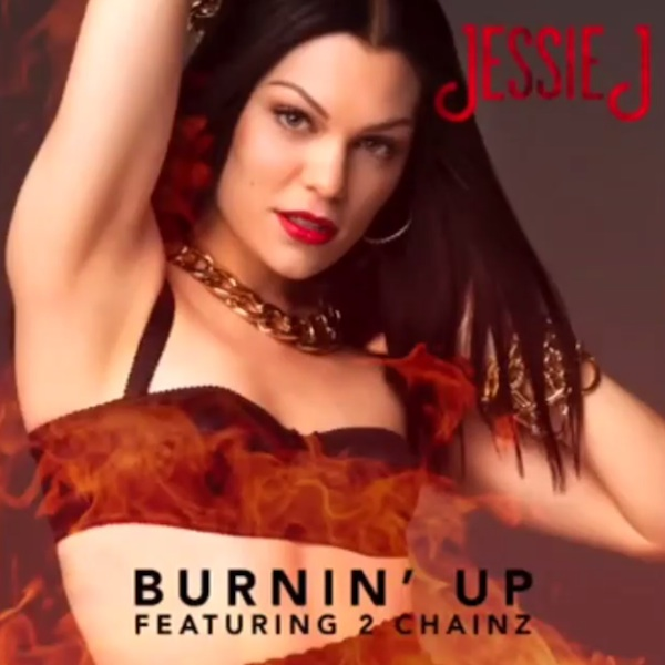 copertina di burning up