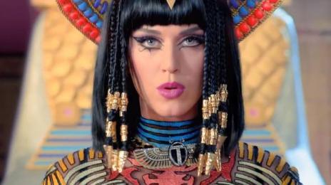 Katy Perry Donates Four Figure Sum To TLC Kickstarter Campaign