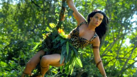 Katy Perry Confirms Super Bowl Guest...Lenny Kravitz
