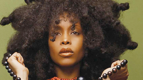 Did You Miss It?! Erykah Badu To Host The 'Soul Train Awards'