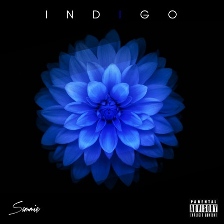 indigo-sammie-thatgrapejuice