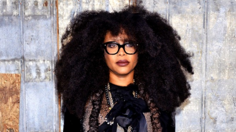 Erykah Badu Slammed On Twitter for Girls Uniform Comment