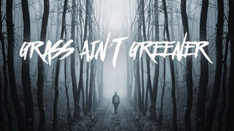 New Song:  Chris Brown - 'Grass Ain't Greener'