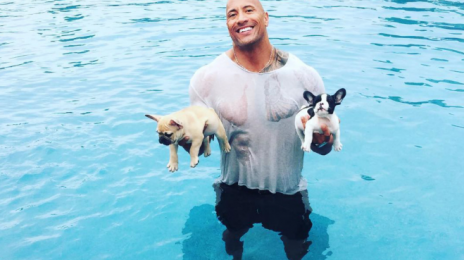 'Muscle Beach': Dwayne Johnson Builds New TV Series