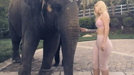 Angry Fans File Petition Against Iggy Azalea For Alleged Animal Cruelty