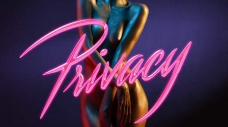 New Song: Chris Brown - 'Privacy'
