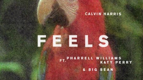 New Song:  Calvin Harris ft. Katy Perry, Pharrell, & Big Sean - 'Feels'