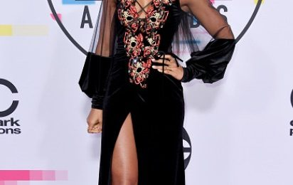 Red Carpet: 2017 American Music Awards