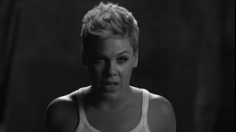 New Video: Pink - 'Wild Hearts Can't Be Broken'