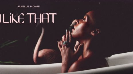 New Song: Janelle Monae - 'I Like That'