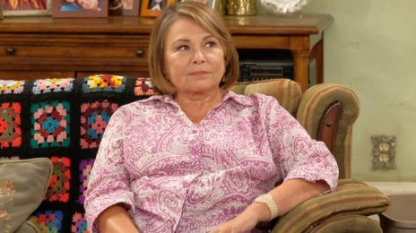 Ambien Maker On Roseanne Blaming Drug For Her Tweets:  'Racism is Not a Side Effect'