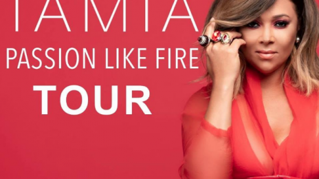 Tamia Announces 'Passion Like Fire' North American Tour