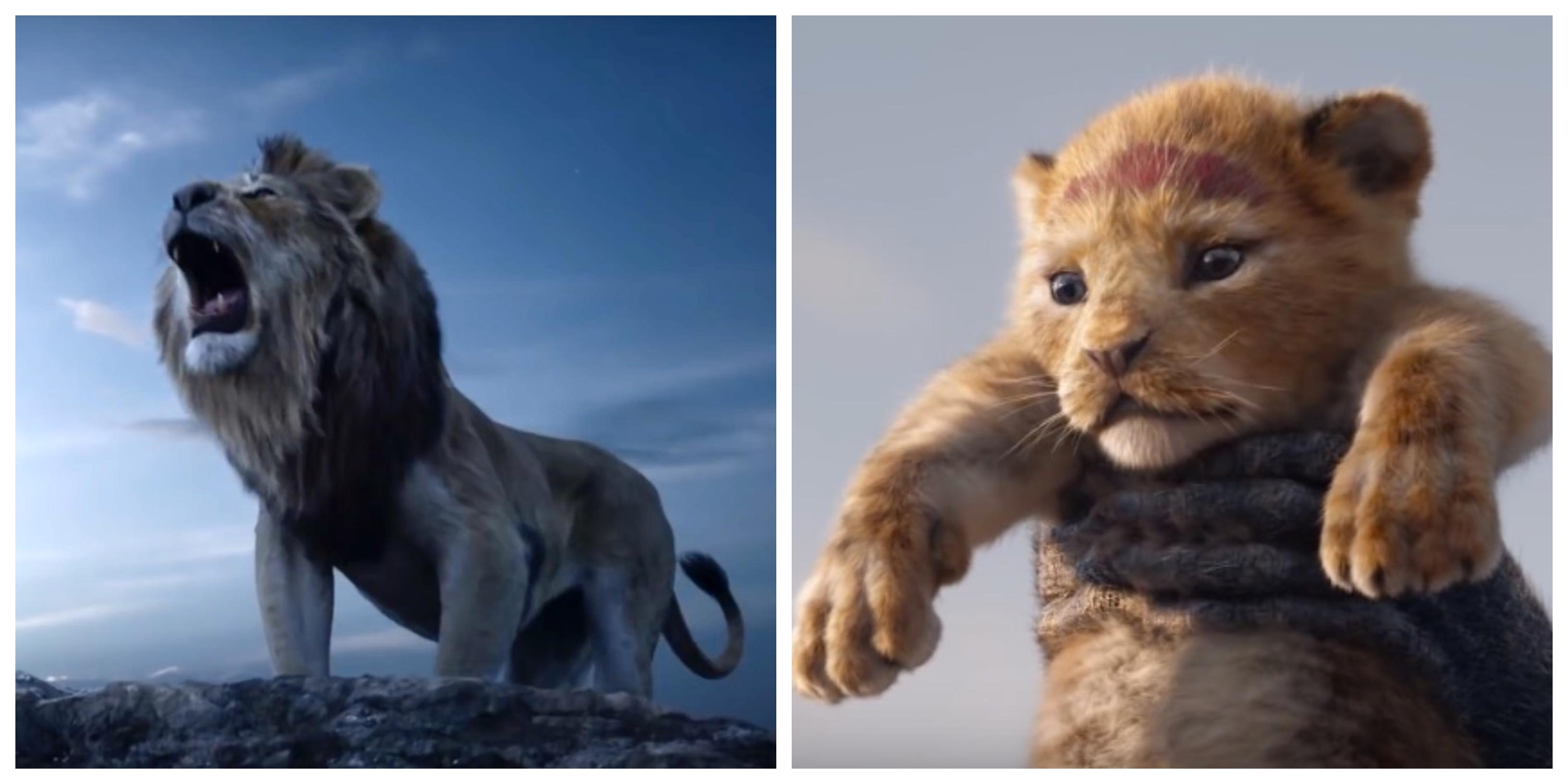 movie trailer   u0026 39 the lion king u0026 39   starring beyonce  u0026 donald
