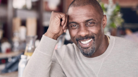 Idris Elba To Replace Will Smith In 'Suicide Squad'
