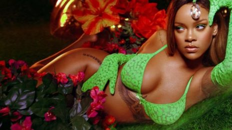 Rihanna On Rumors She'll Portray Villain In 'Batman' Movie:  'Poison Ivy Is My Obsession!' [Video]