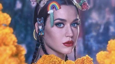 "Katy Perry Glows For Vogue India / Reveals Battle With Depression After Becoming A ""Press Piñata"""