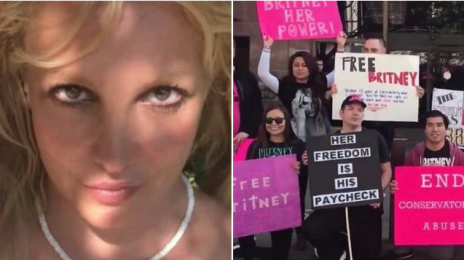 #FreeBritney Protests Erupt Outside L.A. Courthouse Calling for End to Singer's Conservatorship