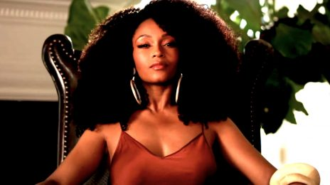 Extended TV Trailer: 'Our Kind of People' [Starring Yaya DaCosta & Morris Chestnut]