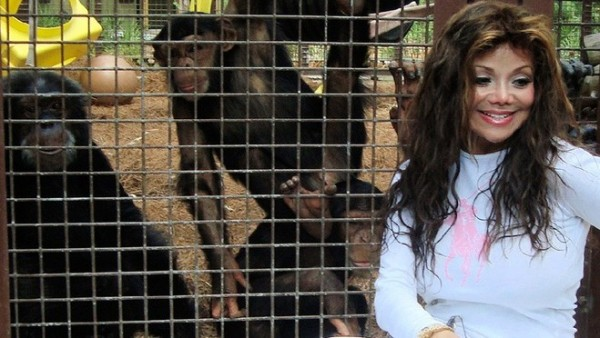 5042cd1563e0d80f98f86b8ac6f3d55e Retro Rewind: LaToya Jackson Reunites With Bubbles The Chimp